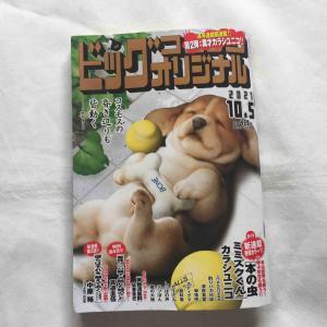 ビッグコミックオリジナル19 No.1422