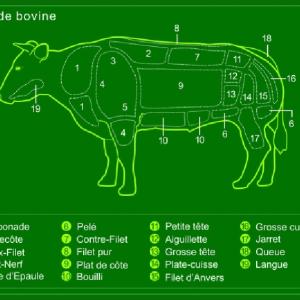 ベルギーとフランスの言い方の違い(お肉)