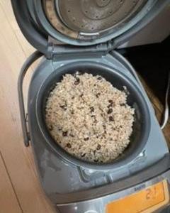 酵素玄米作りの経過