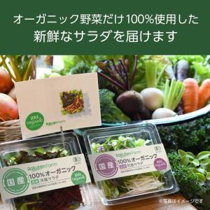 オーガニック野菜 3種のサラダ