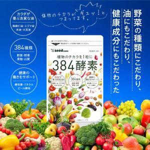 酵素サプリ 384種類の野菜 約1ヵ月分