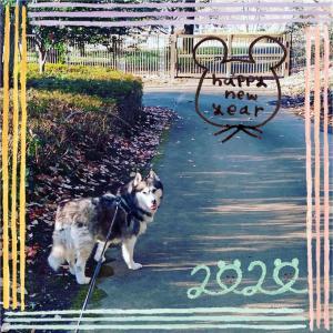 20200101あけおめ散歩