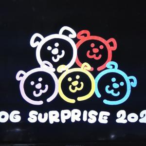 20200201☆監修番組オンエア📺📼