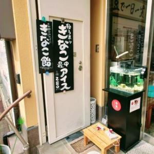 100年以上続く老舗「小谷商店」のきなこアイスが美味しい!
