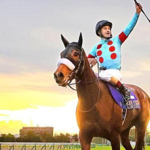 【8/1更新】シルク実績ボーダー・抽選確率予想【2021年度募集馬】