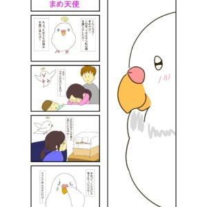 インコ四コマ漫画
