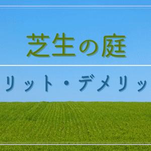 芝生の庭のメリット・デメリット|天然芝の庭3年目の感想