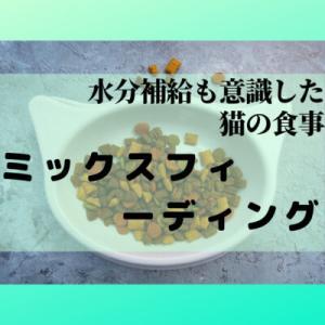 【ミックスフィーディング】猫の水分&栄養バランスを考えたウエット&ドライフードミックス食