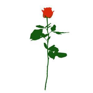 No.091 | Flower