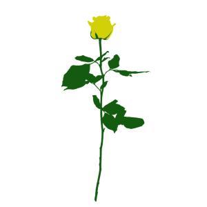 No.092 | Flower