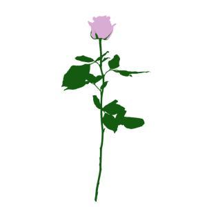 No.093 | Flower