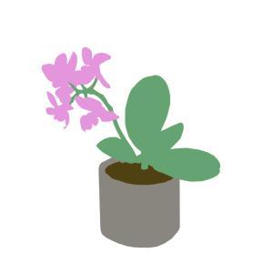 No.095 | Flower