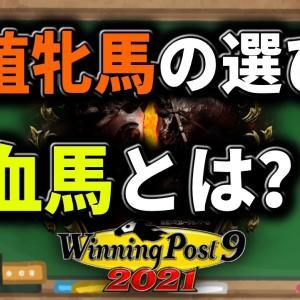 【ウイニングポスト9 2021】繁殖牝馬の選び方、良血馬とは?