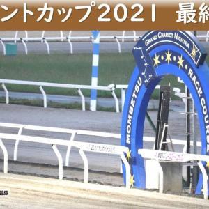 神戸新聞杯2021 出走馬解説!! シャフリヤールがやはり抜けている!? 元馬術選手のコラム【競馬】
