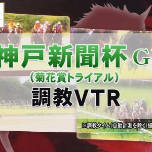 【調教動画】2021年 神戸新聞杯|JRA公式