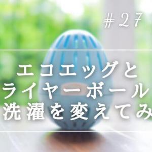 【洗濯物革命】エコエッグとドライヤーボールでお洗濯を変えてみる
