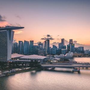 【🐱またたび✈】壮大なる無駄。歩いて越境しました in シンガポール&マレーシア