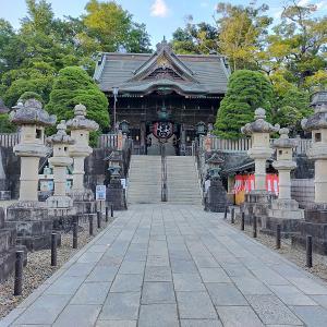 【🐱またたび✈】季節外れの初詣。成田山散策に行ってきました!
