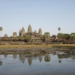 【🐱またたび✈】もはやジブリな風景。カンボジアシェムリアップにいったはなし