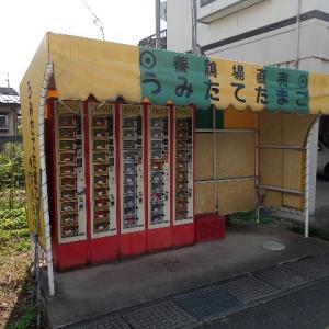 板垣養鶏場「うみたてたまご」自動販売機。