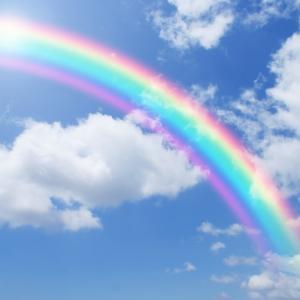 虹の橋で待つペットたち