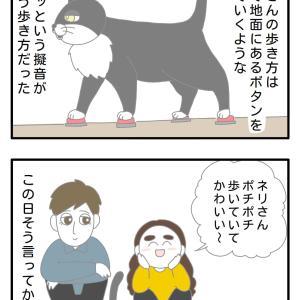 ネコさんと歩く擬音とトム