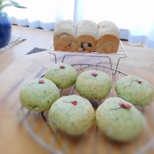 よもぎパン&ささげ(小豆)パン 庭で発酵させました。