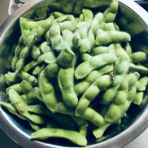 家庭菜園で育てた枝豆、全部収穫してみたww