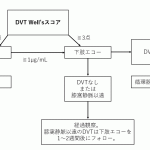 DVT/PEの検査・治療