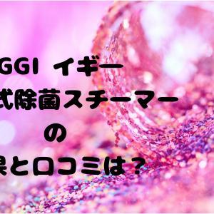 IGGI イギ― 加圧式除菌スチーマー 効果と口コミ使い方をチェック!