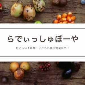らでぃっしゅぼーや!おためしセット購入!子どもも喜ぶ野菜たち!