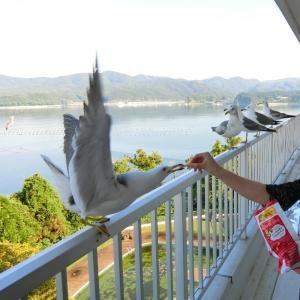 133 塩竃&松島&気仙沼旅行★3部:観洋に宿泊&震災語り部バスツアー