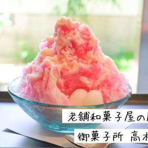 〈御菓子所 高木〉老舗和菓子屋で夏の風物詩、かき氷をいただいてきました【広島市中区十日市】
