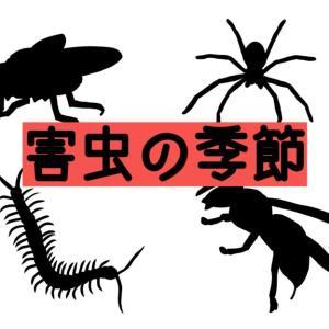 害虫対策できてますか?! キャンプや登山を脅かす害虫のお話!!