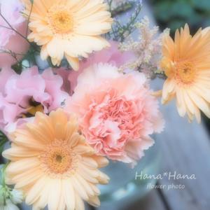 *切り花*