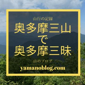 山行の記録|日暮れ覚悟の奥多摩三山縦走