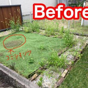 建売の庭ってどうしてる? 草むしりが大変の巻