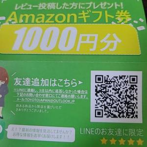 Amazonのサクラレビューの件 地理52【西武池袋線】