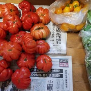 イタリアントマト 地理58【東武スカイツリーライン(伊勢崎線)】