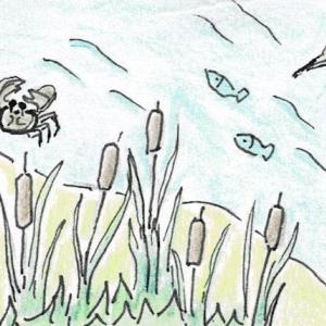 昭和の想い出絵日記【瀬戸川のガマ】