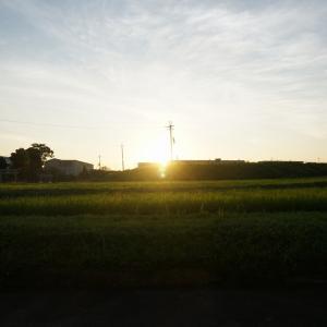 加古川河川敷の朝サイクリング