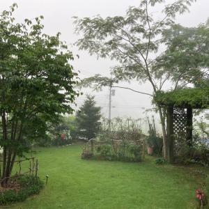 朝は濃霧、昼は夏の日差し