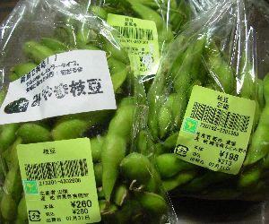 枝豆ふぇす+夏野菜ふぇすた状態