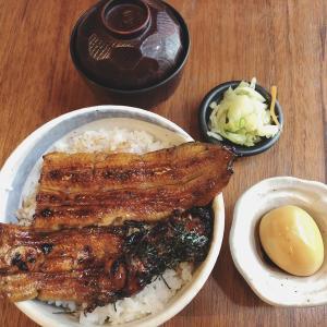 食歩記 まんまる新橋 川魚問屋直営店のサービスうな丼1,200円をいただきました!池袋店もあり