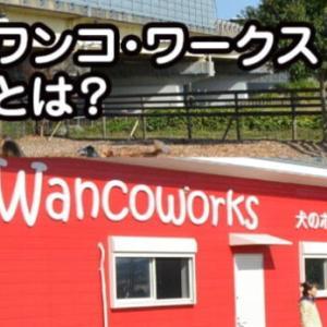飯嶋志帆さんが経営しているワンコワークスとは?