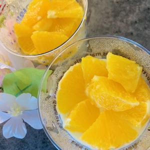 【糖質6.8g】すっぱくて甘い♪オレンジとミルクプリン