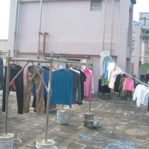 私の洗濯物がパトロールされてる…