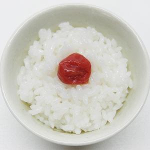 【ダイエット】炭水化物はダイエットの敵?良い炭水化物と悪い炭水化物の話。