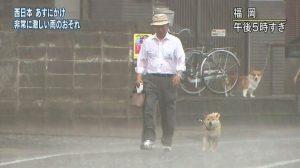 大雨でびしょ濡れのJKエロ過ぎる