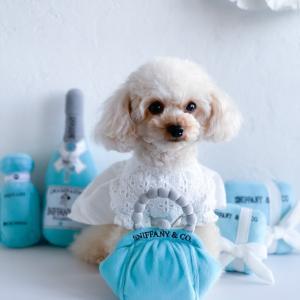 Tiffany Blue の魅力
